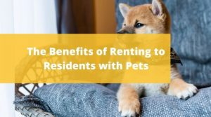 Five Star Property Management residents with pets